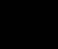 Liberty Black Dove Logo